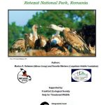 Viability study for the Reintroduction of Griffon Vulture Retezat National Park, Romania