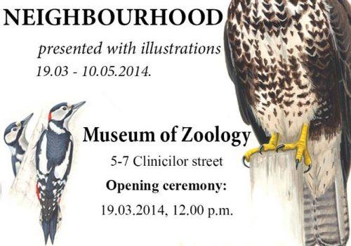 Expoziție: Păsările de lângă noi