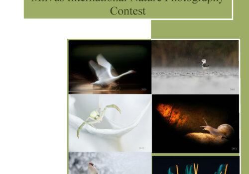 Al VII-lea concurs internațional de fotografie de natură Milvus!