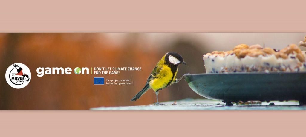 Read more about the article Rezultatul studiului hrănirii păsărilor