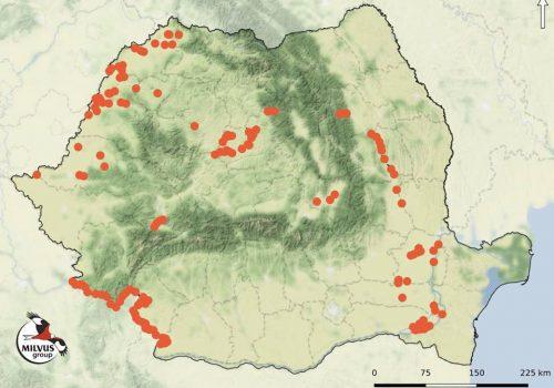 Recensământul de Iarnă al Păsărilor de Apă – 2019