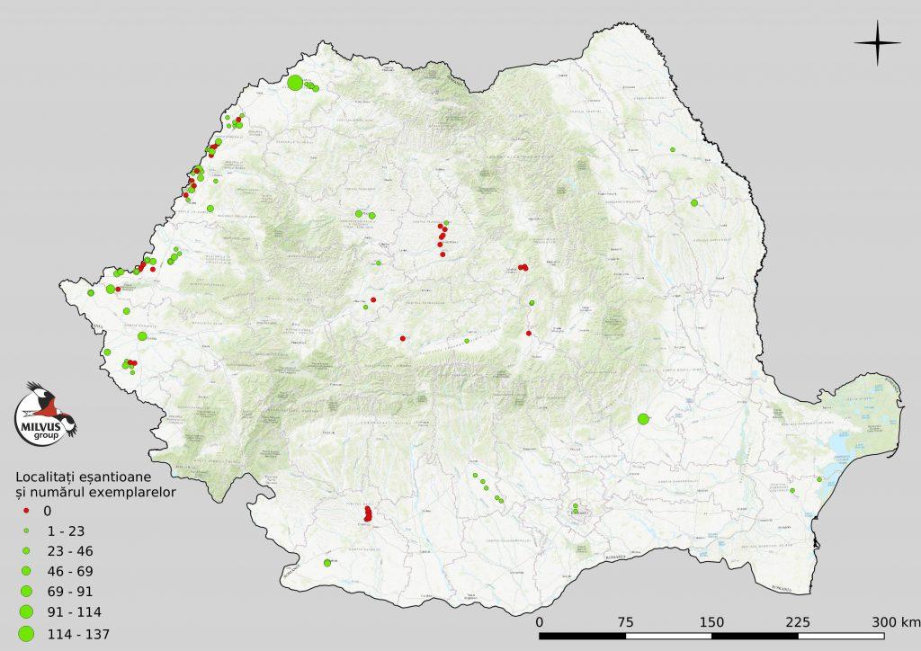Read more about the article Ciufii de pădure, numărați