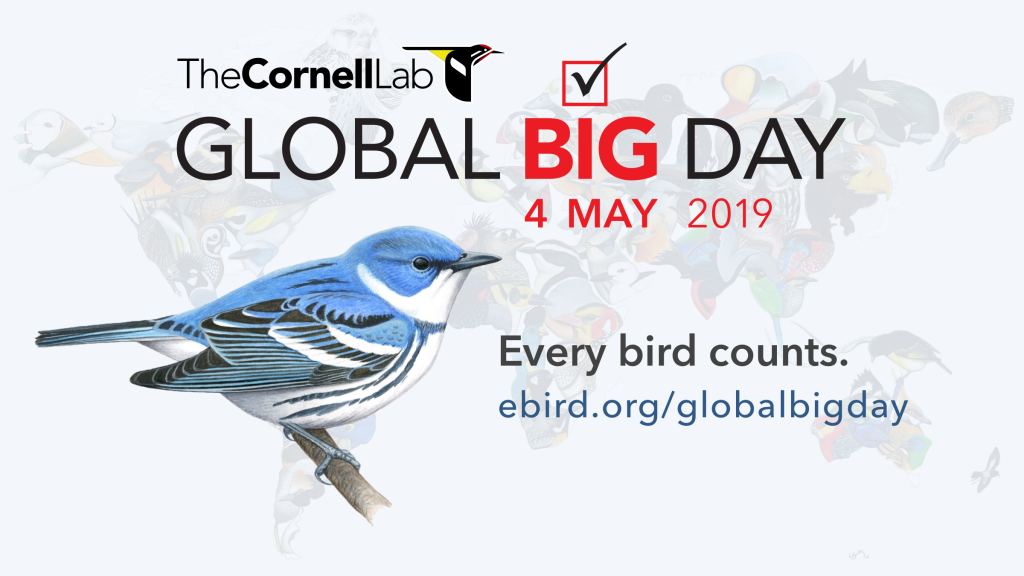 Read more about the article Global Big Day