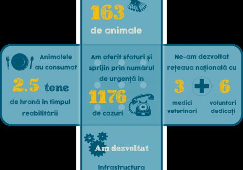 A Sérült Vadállatok Rehabilitációs Központjának tavalyi adatai