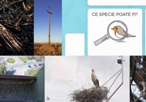 Un nou podcast: martie pe scurt