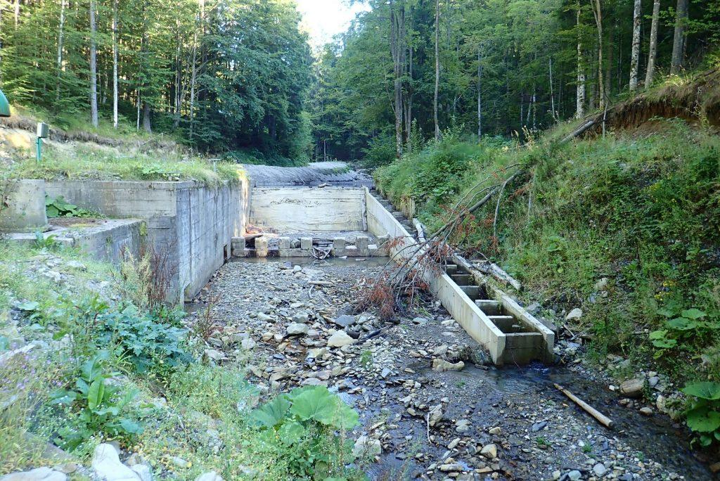 Read more about the article Energie verde în detrimentul naturii?