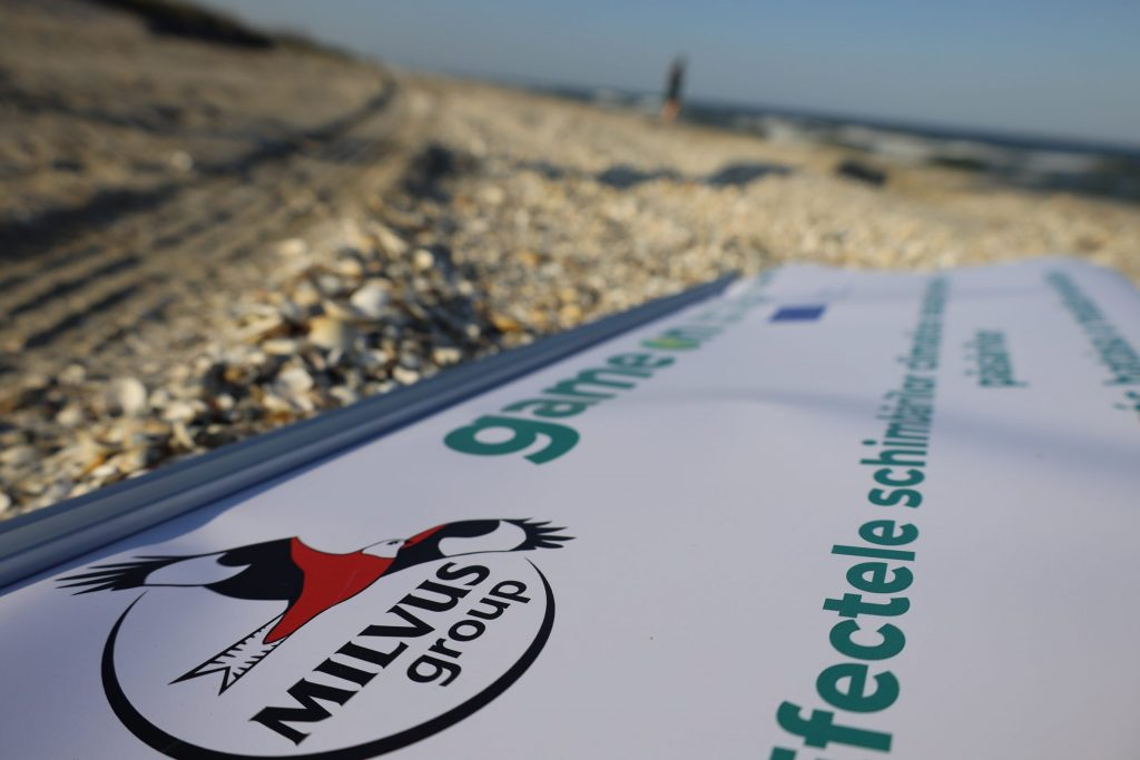 Read more about the article Păsări, schimbări climatice și o plajă arzătoare