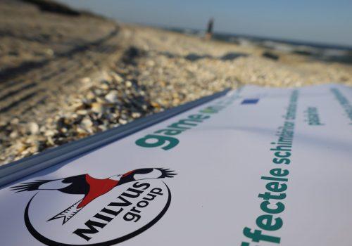 Păsări, schimbări climatice și o plajă arzătoare