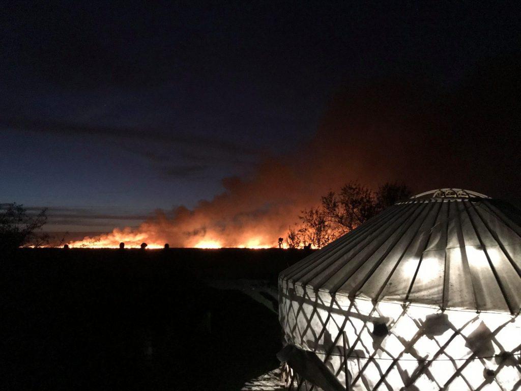 Read more about the article Închidem tabăra de inelare din acest an din cauza unui incendiu de vegetație