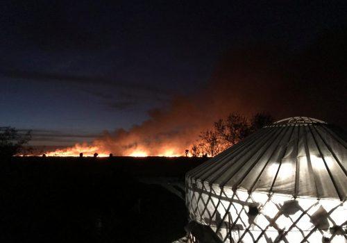 Închidem tabăra de inelare din acest an din cauza unui incendiu de vegetație