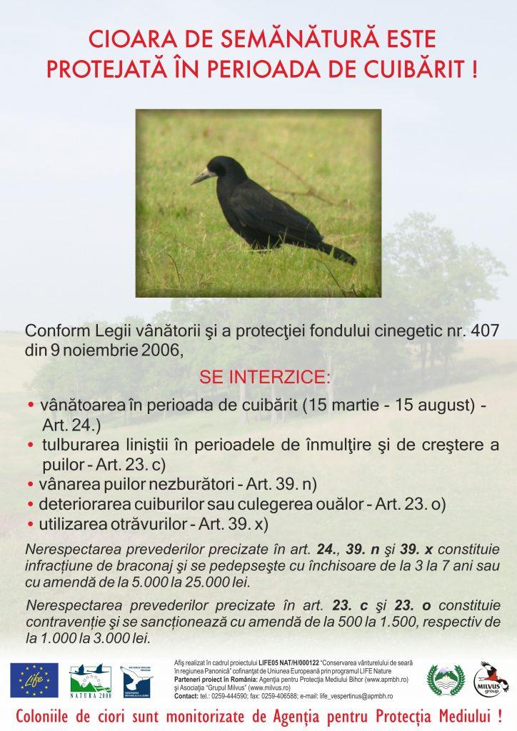 Read more about the article Cioara de semănătură este protejată în perioada de cuibărit!