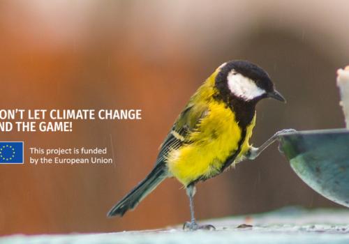 Téli madáretetők látogatottságának felmérésének eredménye