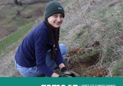 Ambasadori tineri luptă împotriva schimbărilor climatice: plantează arbori