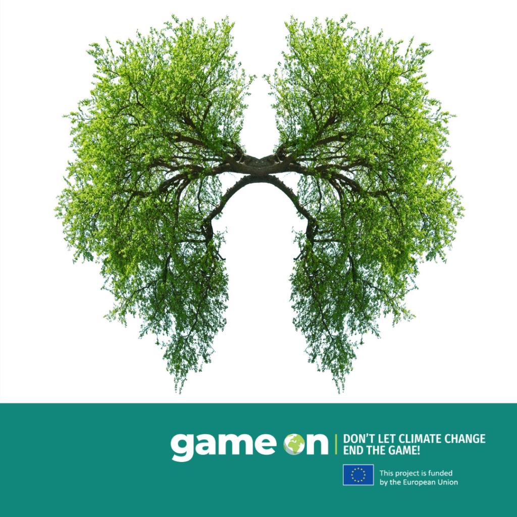 Cum arată viitorul fotosintezei?