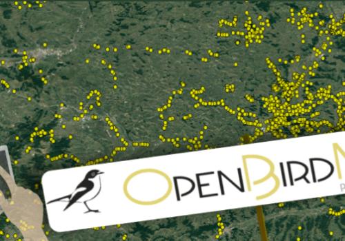 Provocarea lunii, de la OpenBirdMaps