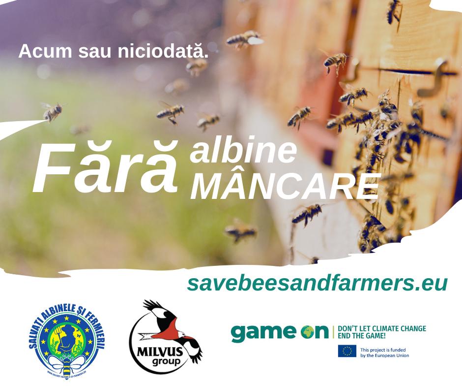"""Read more about the article """"Salvați albinele și fermierii!"""""""