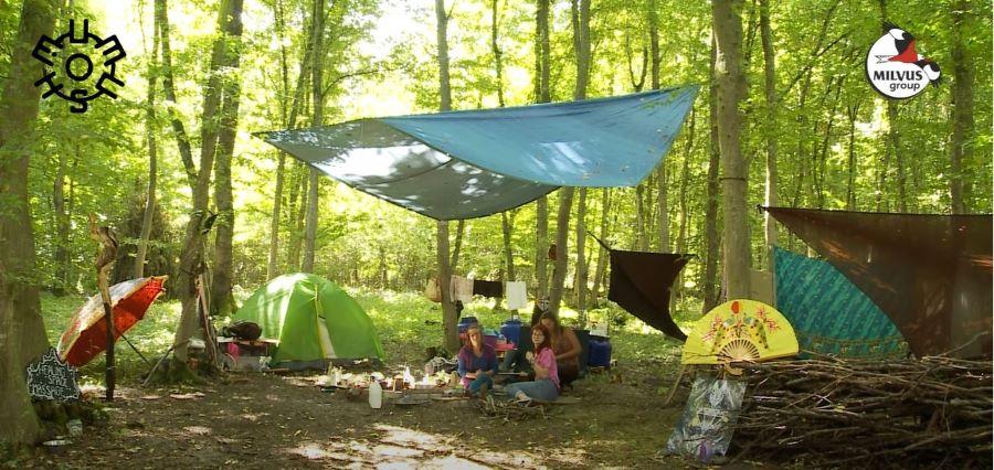 Read more about the article MUMUSH, un festival al naturii
